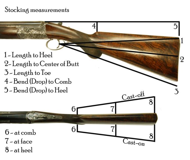 shotgun-gun-fit-measurements